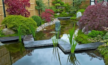 Japanese Gardens and Sage Interiors