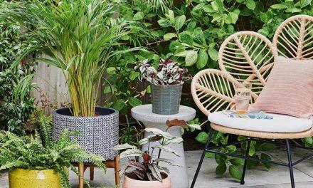 Garden Updates and Trendy Floor Lamps